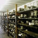Salvage Auto Parts